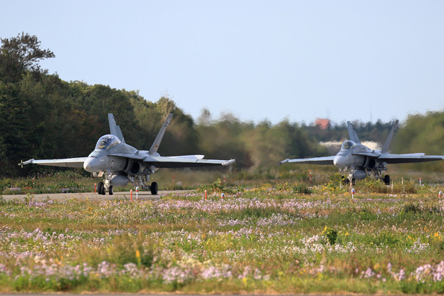 F/A-18 RAAF taxiing