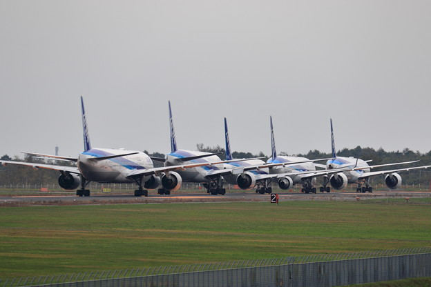 台風19号を避難して来た機体達(5)