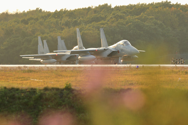 F-15 line up(1)