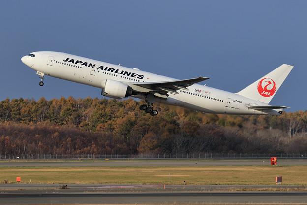 Boeing777 JA009D 朝日に輝く