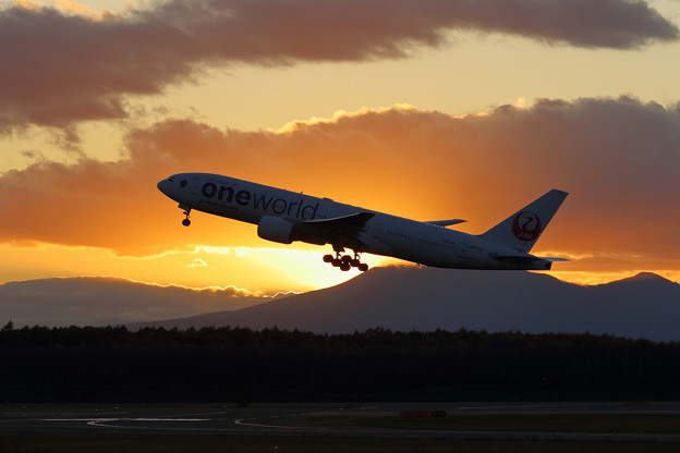 Boeing777 JAL 夕陽