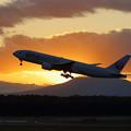 Photos: Boeing777 JAL 夕陽