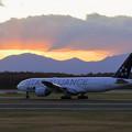 Photos: Boeing777 ANA 陽が落ちて