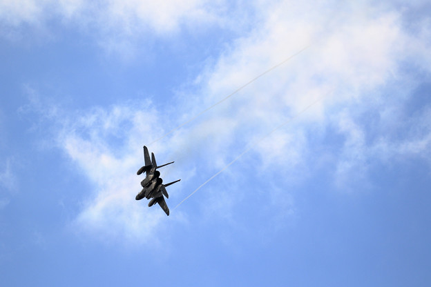 F-15J Eagle 往く(1)