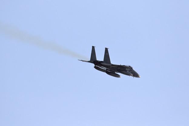 F-15J Eagle 往く(3)