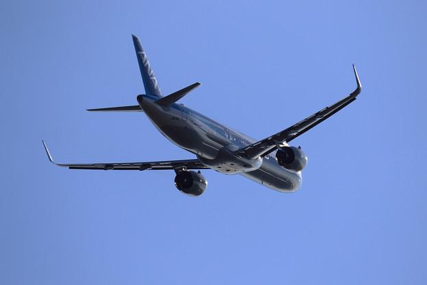 A321neo Metallic body