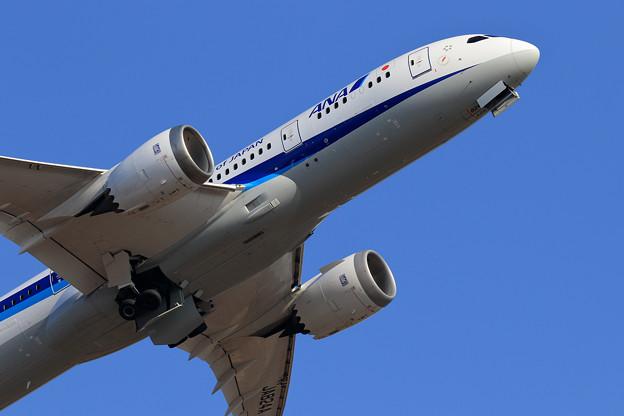 Boeing787 ANA赤い羽根JA824A