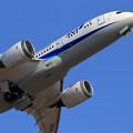 Photos: Boeing787 ANA赤い羽根JA824A