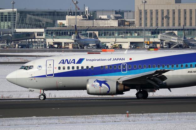 Boeing737-500 JA307K 花束をたずさえて
