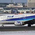 Photos: Boeing737-500 JA307K 花束をたずさえて