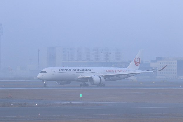 Photos: A350 JAL503 霧の朝 (1)