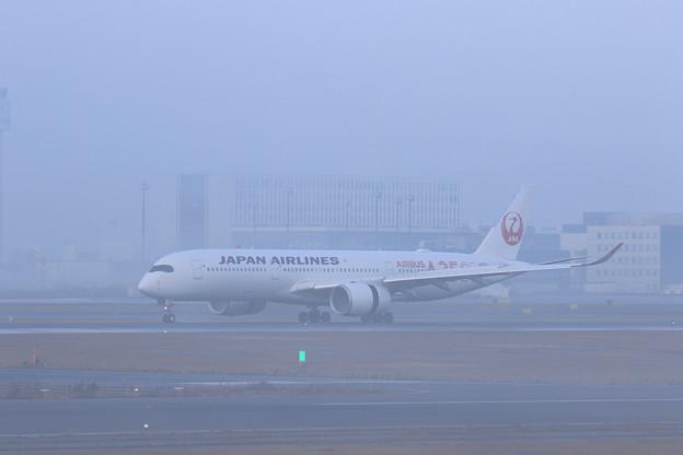 A350 JAL503 霧の朝 (1)