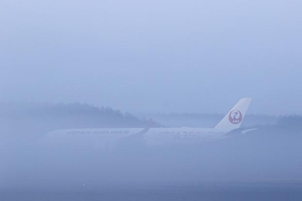 A350 JAL503 霧の朝 (2)