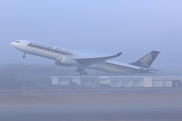 A330 SIA661 霧の朝