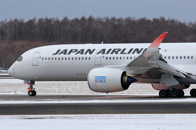 A350-900 JAL JA03XJ (2)