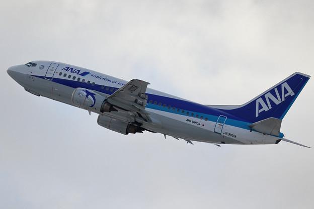 Boeing737-500 JA305K 魚の束を携えて(2)