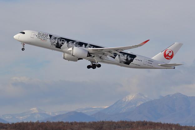 A350-900 JAL JA04XJ (2)