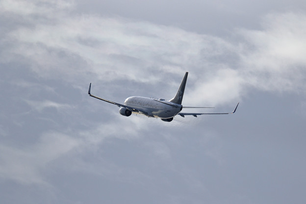 Boeing737 モノトーンな空
