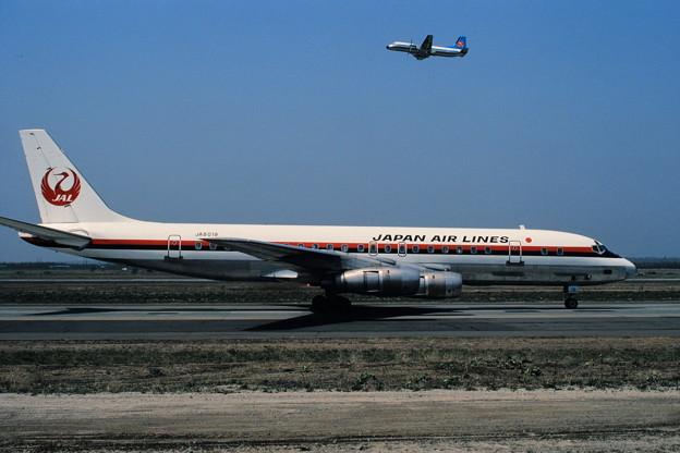 DC-8-55 JAL JA8019 CTS 1980.05