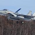 F-15 2020初撮り (4)