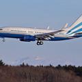 Photos: Boeing737BBJ LAS VEGAS SANDS N883LS