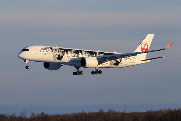 A350-900 JAL JA04XJ approach