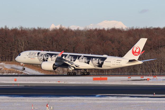 A350-900 JAL JA04XJ landing
