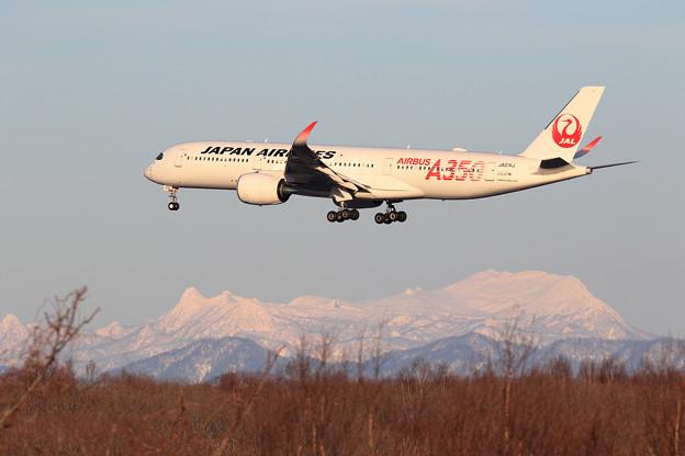A350 JAL JA01XJ approach