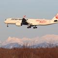 Photos: A350 JAL JA01XJ approach