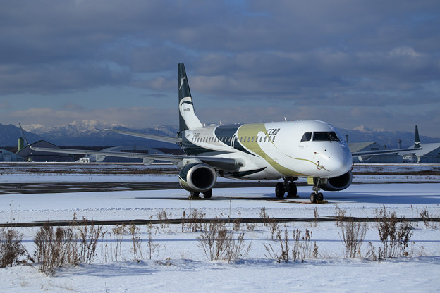 Embraer Lineage 1000 B-3203 Guanghui Group
