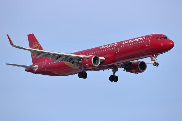 A321 吉祥航空 B-8317 approach