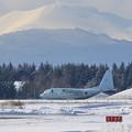 Photos: C-130R 9054 61FS JMSDF 飛来 (2)