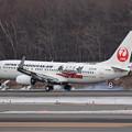 Boeing737 JTA JA08RK 飛来(2)