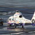 Photos: Eurocopter AS365N2 JA005H OKD 2003.08
