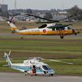 UH-60J 58-4562 + S-76C MH755くまたか OKD 2004.09