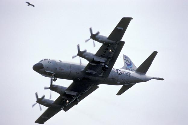 P-3C VP-40 QE-6 159326 MSJ 1983