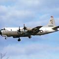 Photos: P-3C VP-46 RC-1 159893 MSJ 1984