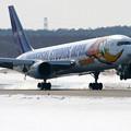B767-300 JA8357 ANA CTS 2006.02