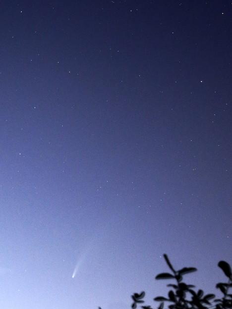 ネオワイズ彗星 2020.0717