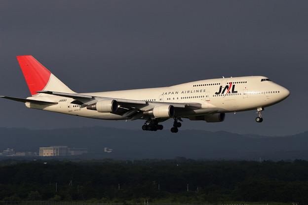 B747-446 JA8083 JAL CTS 2006.08