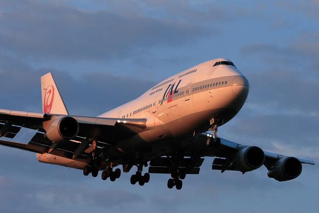 B747-446 JA8908 JAL CTS 2006.09