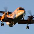 Beech 1900D JA017A Airtransse CTS 2006.08
