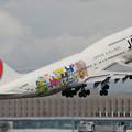 B747-446D JA8905 JAL たまごっち 2007.09