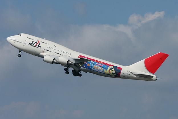 B747-446D JA8904 JAL たまごっち 2007.08