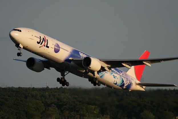 B777-300 JA8941 JAL OneWorld 2007.09(2)