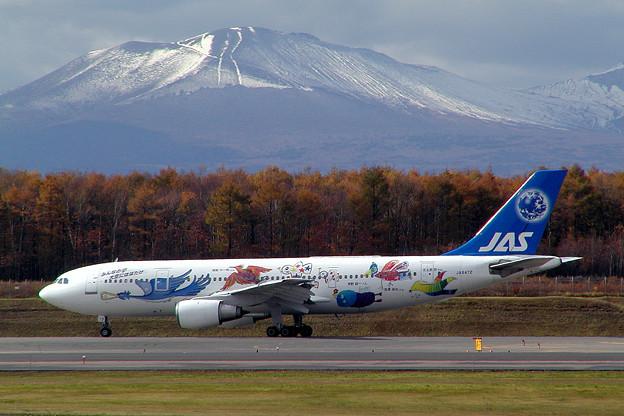 Photos: A300B2 JA8472 JASフレンドリーバード 2002.10(1)