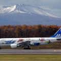 A300B2 JA8472 JASフレンドリーバード 2002.10(1)