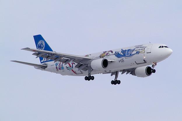 Photos: A300B2 JA8472 JASフレンドリーバード 2003.01
