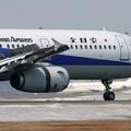 Photos: A321 JA101A 全日空 [NH] CTS 2006.03