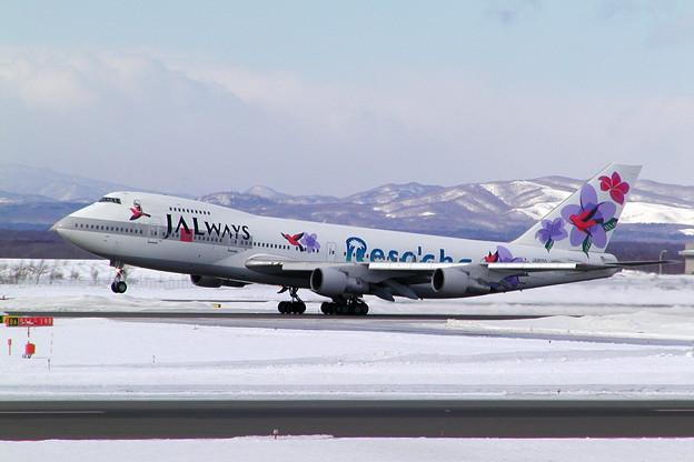 B747-200 JA8150 JALways 2005.01(1)